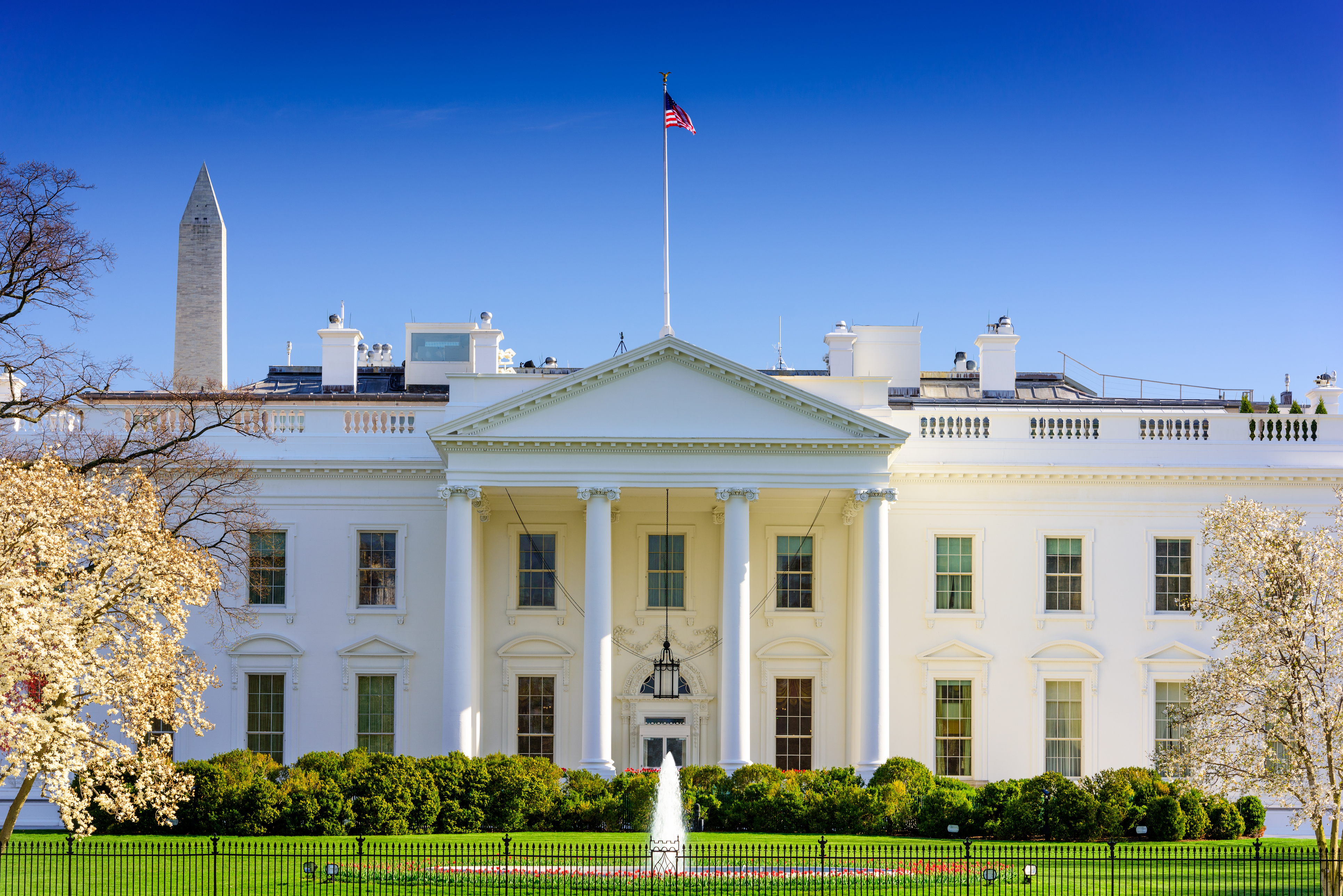 white house contact us
